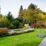 Wohnanlage Haus am Wald Ratingen - Grünanlage mit Teich