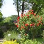 Wohnanlage Haus am Wald Ratingen - Grünanlage mit Teich und Blumenlandschaft